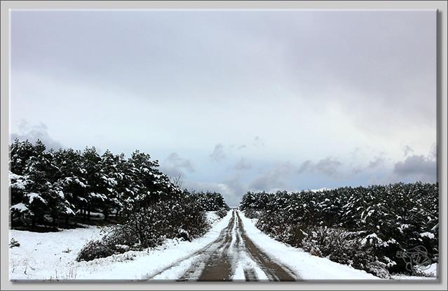 En busca de las primeras nieves (10)