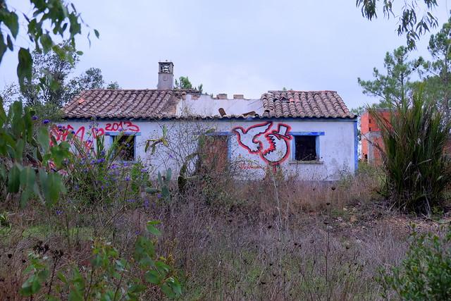 street art | dalaiama | algarve . portugal 2013