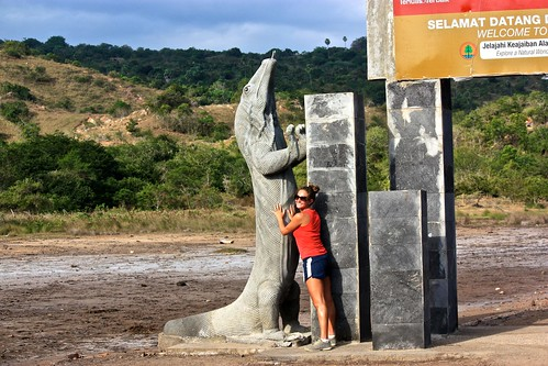 The largest Komodo dragons are the size of this statue... They really are modern day dinosaurs