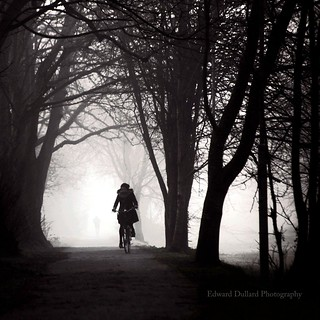 Misty morning cyclist.