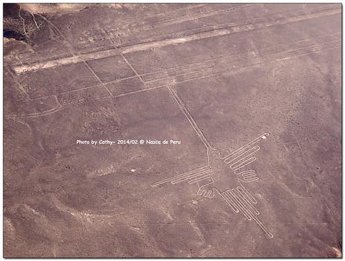 Nazca-26