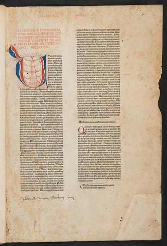 Red printing and penwork initial in Petrus de Abano: Conciliator differentiarum philosophorum et medicorum