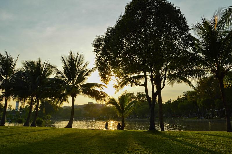 Evening in Chatuchak Park