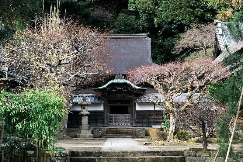 Shariden National Treasure Engakuji Temple Kamakura