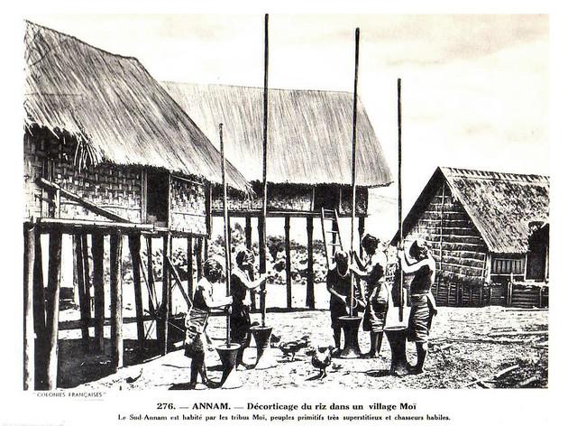 Collection COLONIES FRANCAISES années 1930 - ANNAM. Décorticage du riz dans un village Moi - Giã gạo tại một làng người Thượng