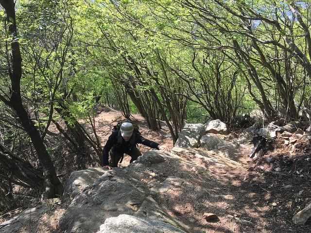 錫杖ヶ岳 加太コース 岩場 いち