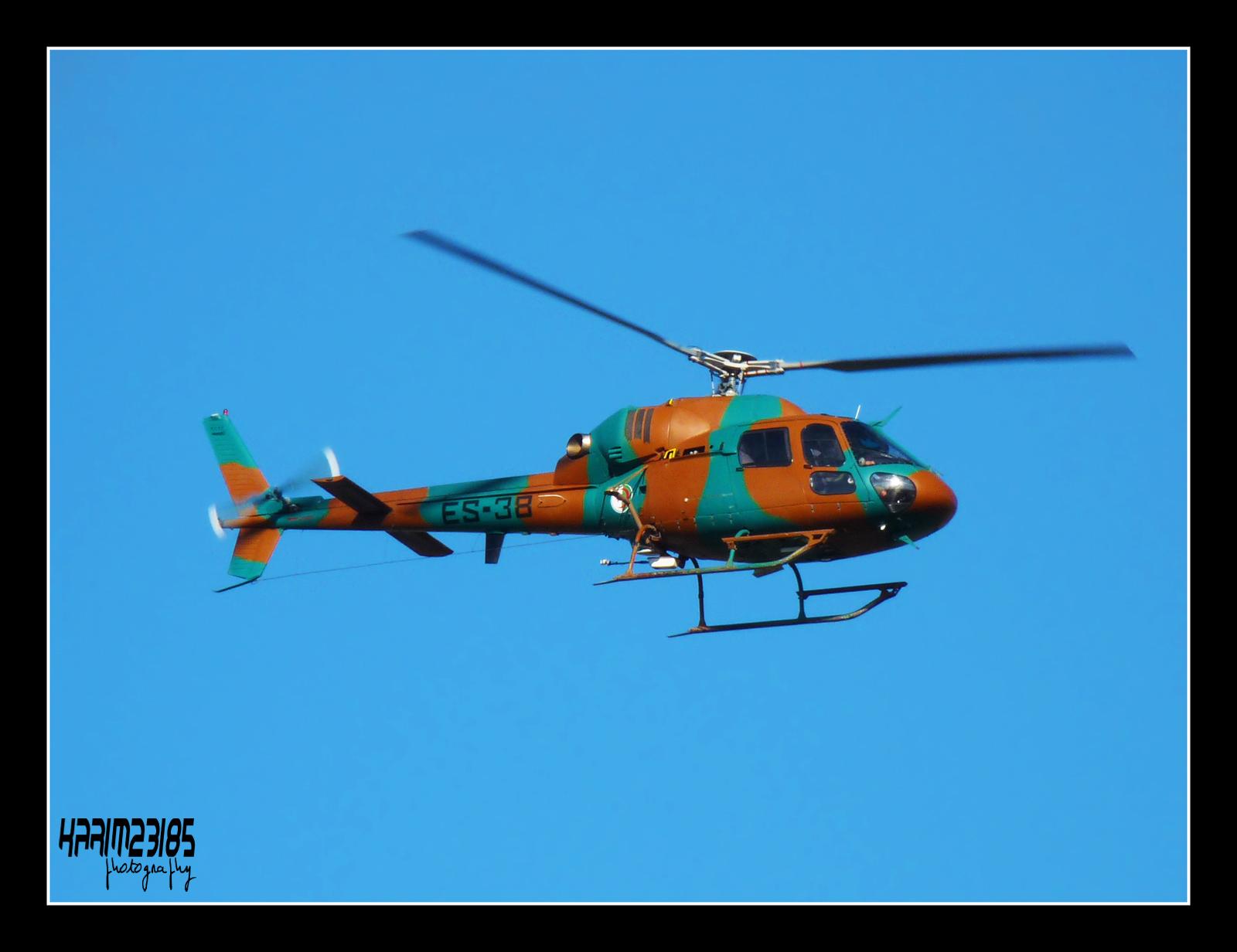 صور مروحيات القوات الجوية الجزائرية Ecureuil/Fennec ] AS-355N2 / AS-555N ] - صفحة 5 27390341715_65aa9eac82_o