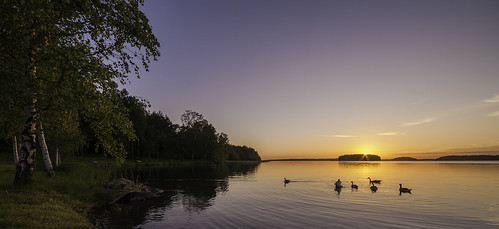 sunset summer sun suomi landscape goose canon5d lappeenranta 14mm samyang