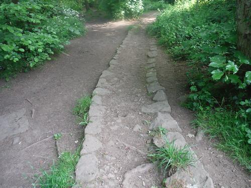 'Stone Rails' sunken trackway, Ecclesall Woods
