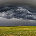 Stormfront by WhoShotChris