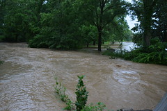 natural disaster, flood, river, watercourse, disaster,