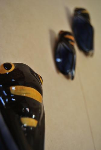 Cicadas on the wall by Mwap38