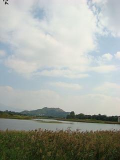 006 Wetland Park