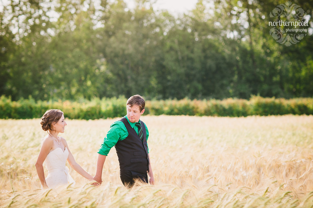 Newlyweds in the Barley Field