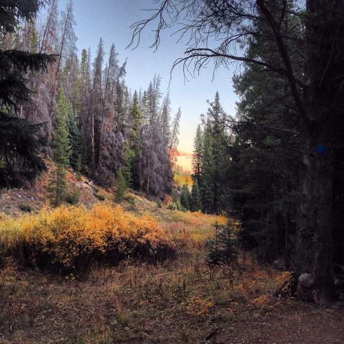 sunrise colorado trail