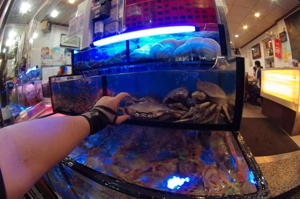 秋蟹的時節之龜吼漁港螃蟹吃到累