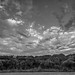 Small photo of Clouds, Meola Reef Reserve