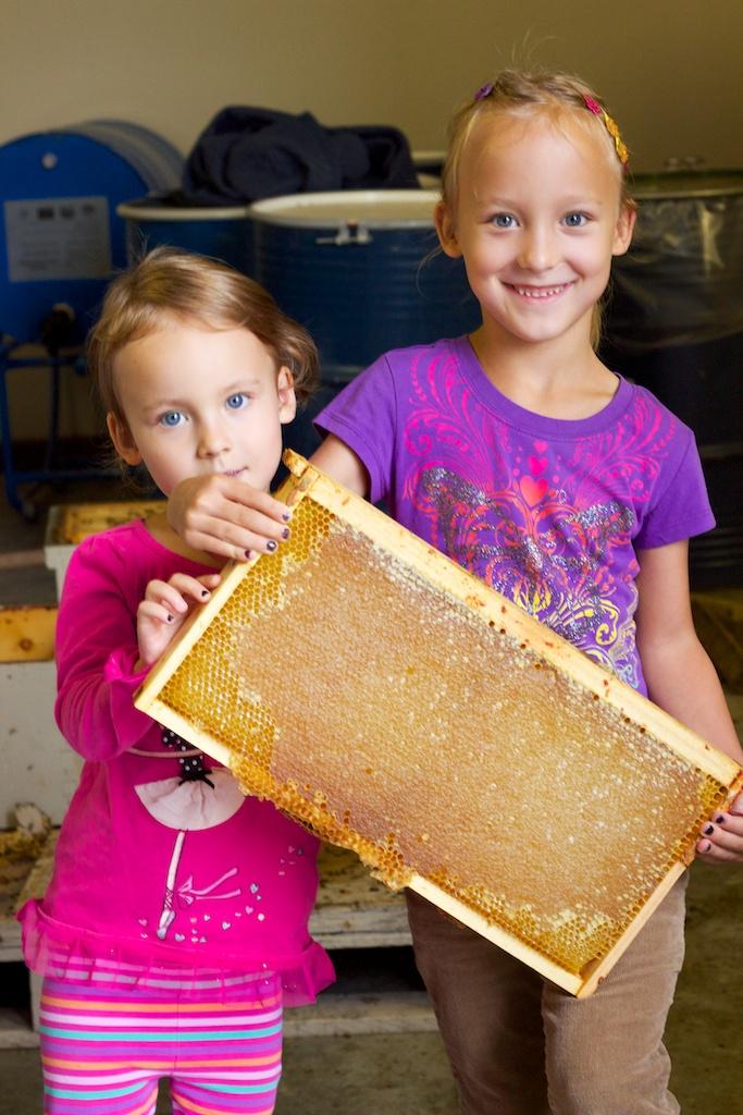 Kids holding full honey frame