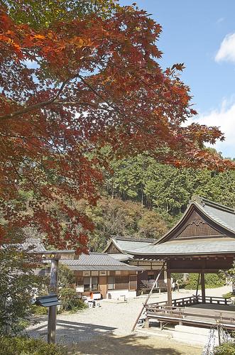 【写真】2013 紅葉 : 日向大神宮/2020-10-05/IMGP3378