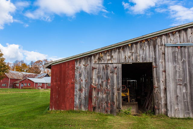 Red barns in Sudbury, Vermont