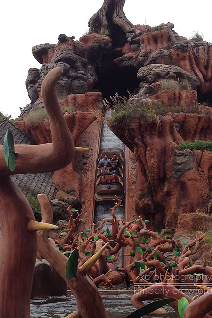 Splash Mountain.jpg