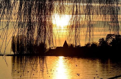 couleurs coucher silhouettes lac paysages contrejour couchant ombres saintsulpice doré fabuleuse