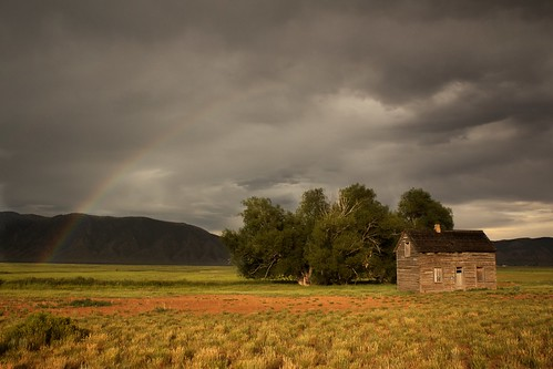 travel trees house tree abandoned nature beautiful field clouds america landscape gold golden evening utah rainbow warm pretty natural wheat calm serene terrencemalick