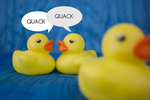 Duck Gossip