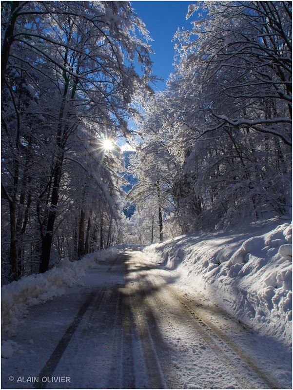 Un lendemain de neige 12590440403_4eba97a01d_b
