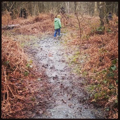 Muddy tracks