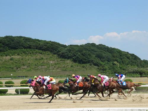 佐賀競馬場の騎乗風景
