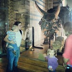 And this is a triceratops