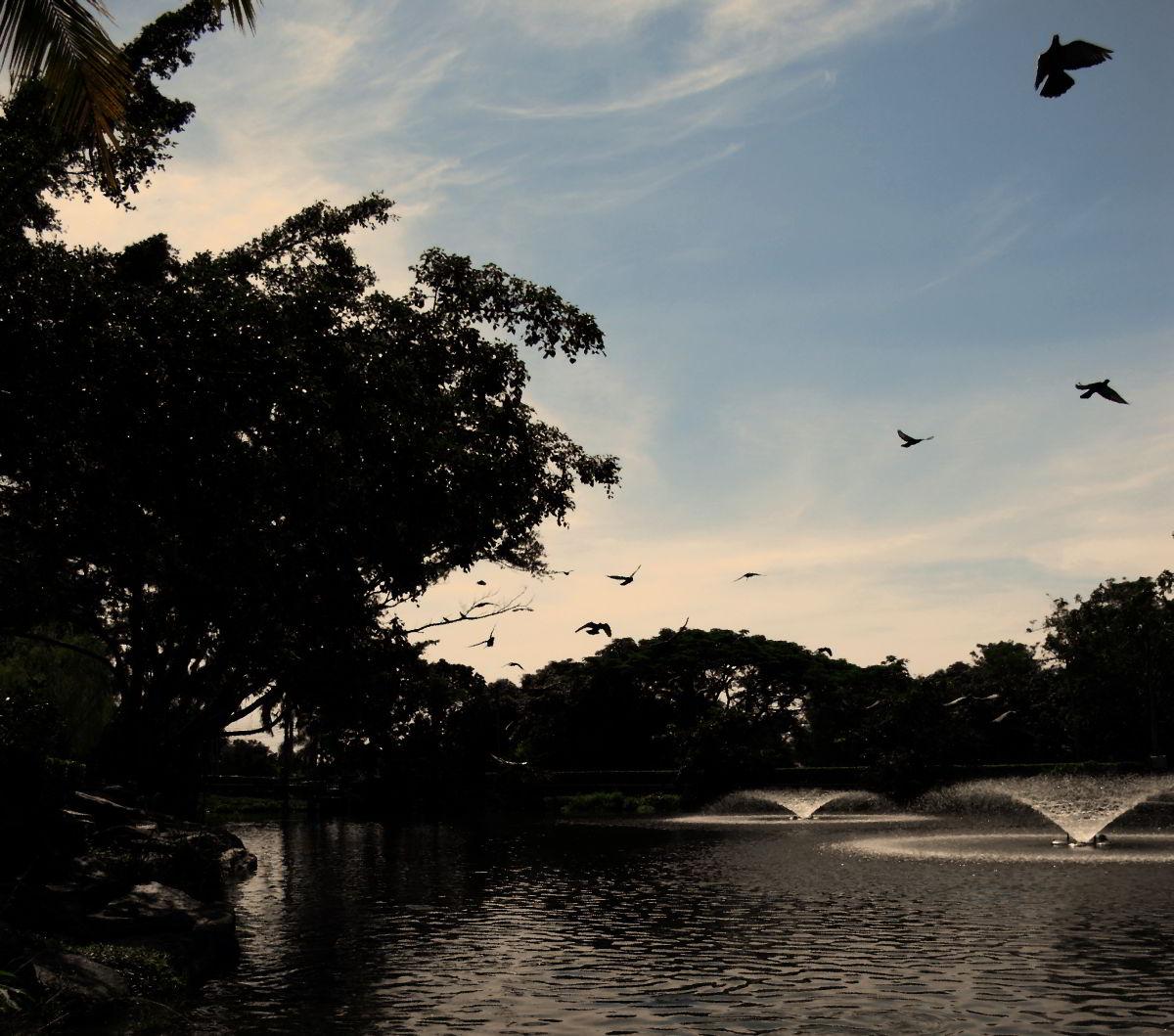 Thai temple lake