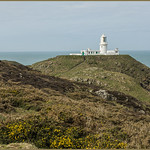 STRUMBLE HEAD LIGHTHOUSE-- published WESTERN MAIL , 24th. April