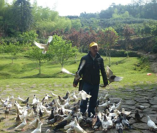 Fujian-Wuyi-Shuillandong-Dahongpao (26)