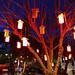 P1000616b - Lanterns