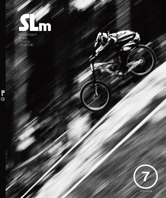 SLm_06_H1_H4