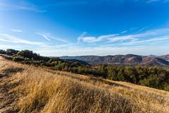 Kings Canyon & Sequoia - 22