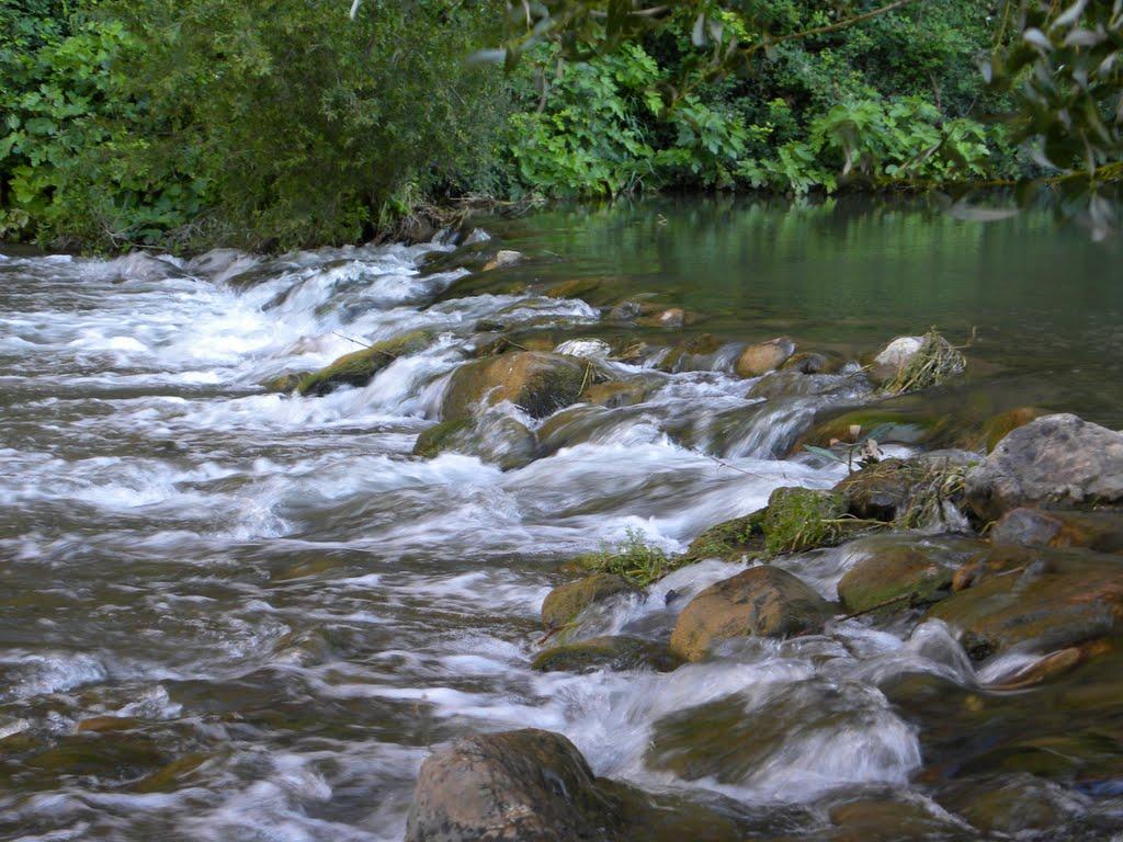 Por el río Palancia. Autora, Amparo Timoteo Ramon