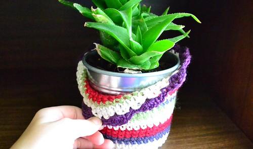 Plant Cozy