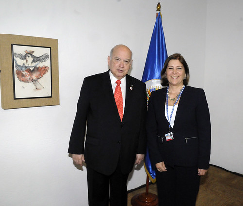 Secretario General de la OEA se reúne con Ministra de Relaciones Exteriores de Perú