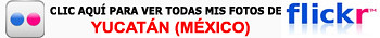 Haz clic aquí para ver mi galería completa de fotos de México en Flickr Qué visitar en Yucatán en México - 8984566401 b5ec00262b - Qué visitar en Yucatán en México