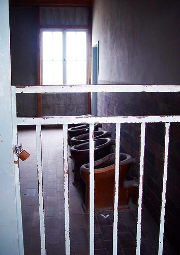 Dachau13