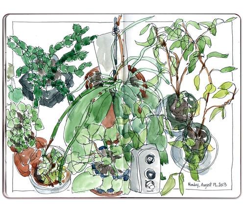 Plants by Jennifer Appel