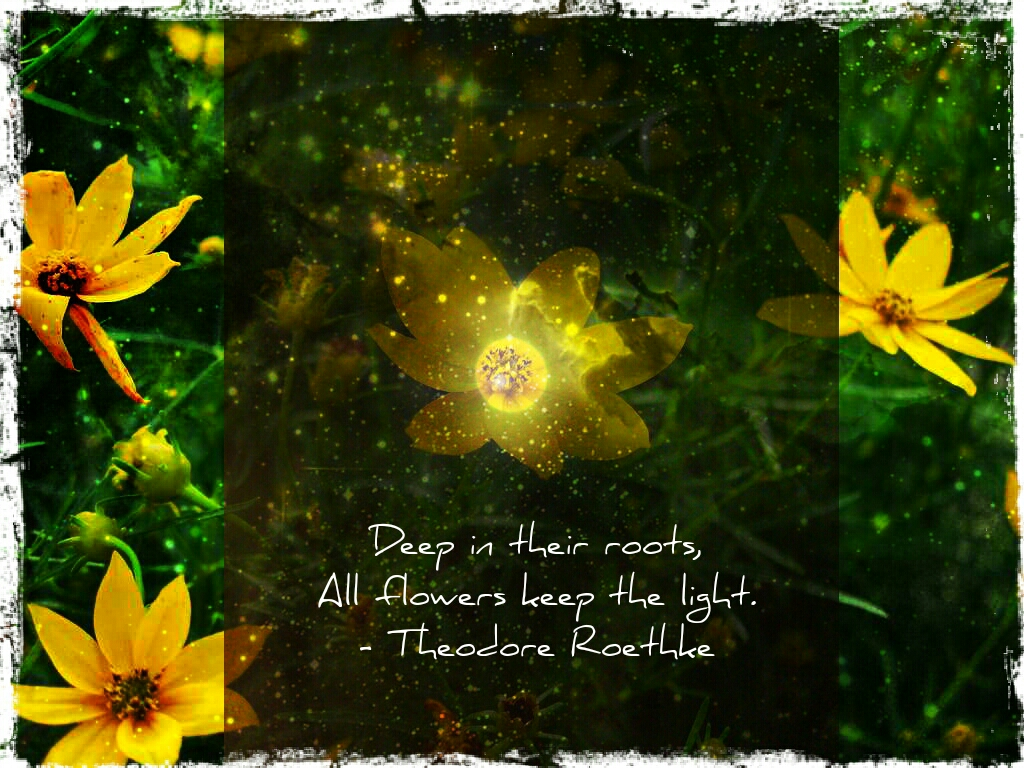 Flowerlight | pixlr express mobile  added image of the moon