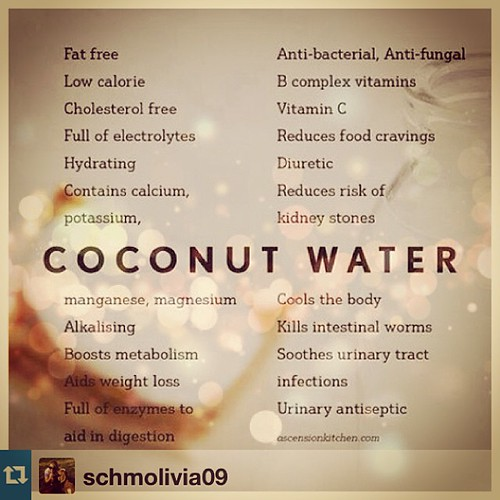 How to Coconut - Coconut Water uses & more on the Blog www.therabbitandtherobin.co.za {follow me @robindeel on Instagram} Official @rabbitandrobin  #coconut #coconutwater #howto #food #health #raw #vegan #vegetarian #Repost from @schmolivia09 with @repost