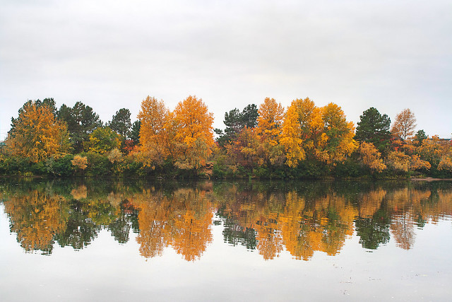 Autumn at the River