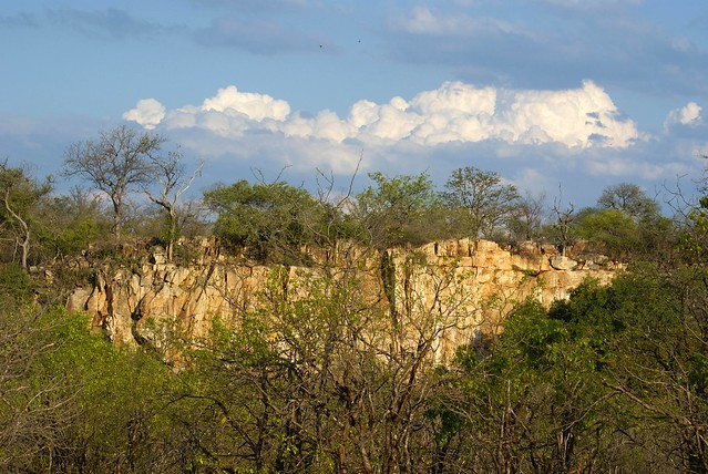 Sudáfrica - Kruger - Phalaborwa (72)