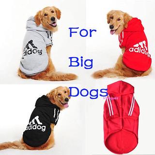 Hoodies for big dogs