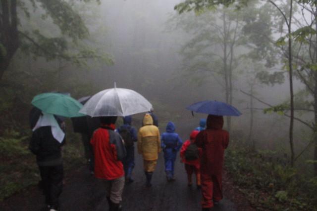 雨と霧の中,観察会が始まった.